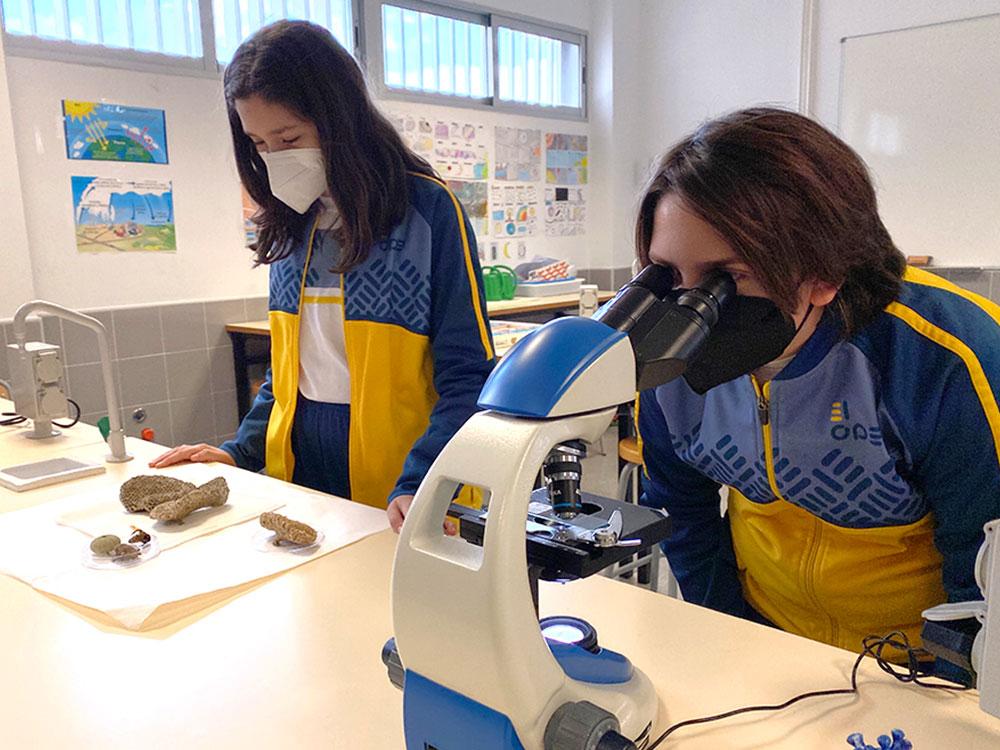 laboratorio-01